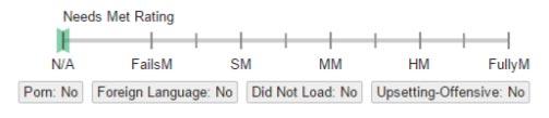 Google质量评分指南